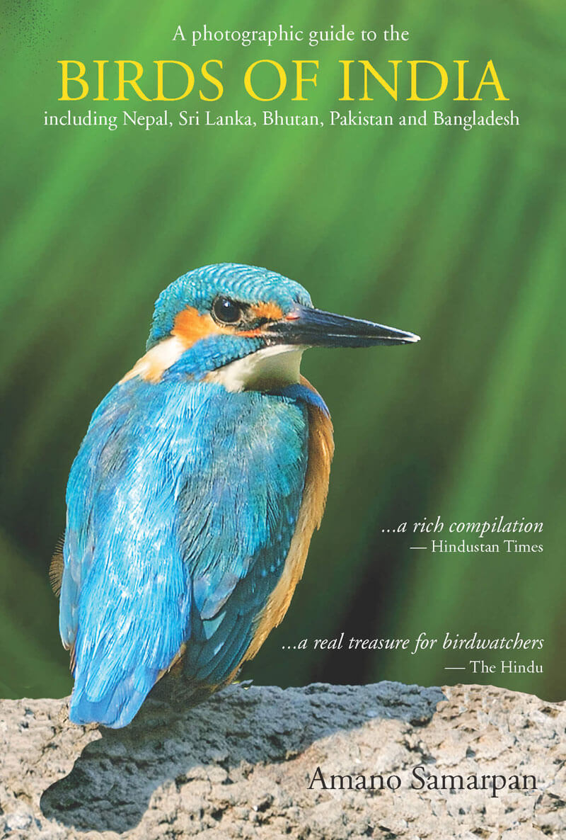 Birds Of India: A Photographic Guide
